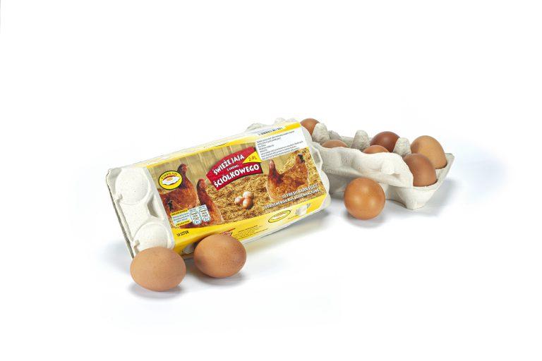 jaja-sciolkowe